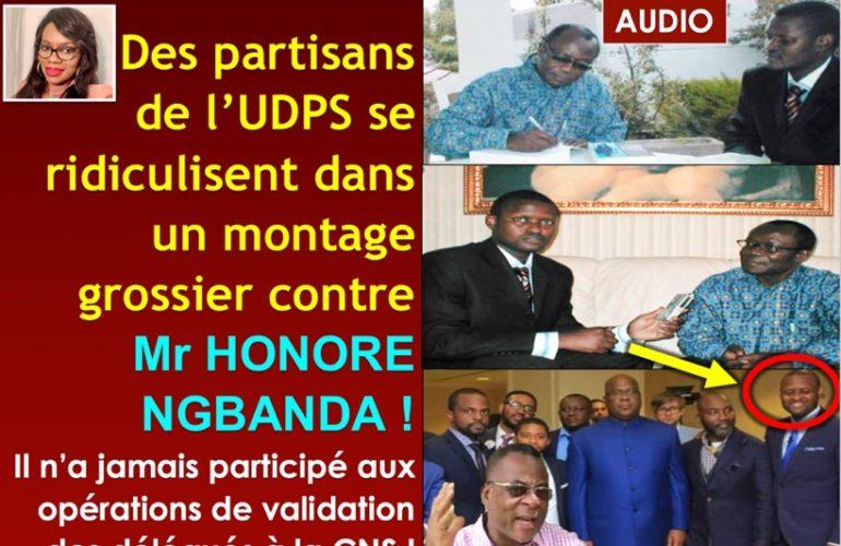 LDP: Montage grossier de L'udps contre HN